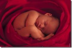 151 ENFANT BEBE FOETUS